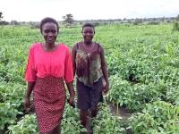 Image-Uganda-women farmers